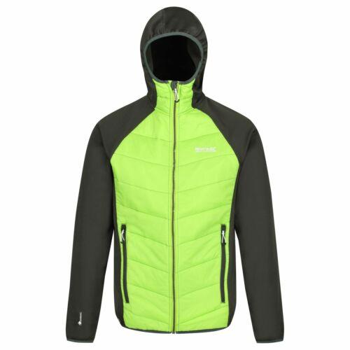 Regatta señores Montaña Sport Thermo stretchjacke Hybrid chaqueta calle IV Hybrid verde