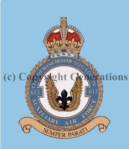 ROYAL AIR FORCE 613 SQUADRON  COASTER