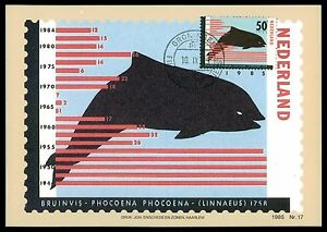 Stamps Reliable Niederlande Mk 1985 Fauna Wale Wal Whale Maximumkarte Maximum Card Mc Cm Bv55