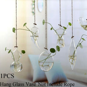 Creative-Garden-Supplies-Glass-Vase-Hanging-Glass-Plant-Pot-Terrarium-Container