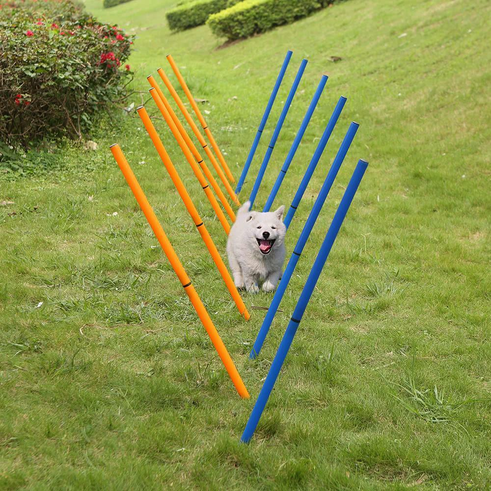 Outdoor Dog Agility Sports Pet Supplies Toys