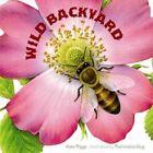Wild Backyard by Kate Riggs (Board book, 2016)