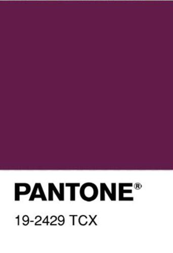 Wirkfutter red-tela elástica decorativas lencería ropa interior ropa sustancias