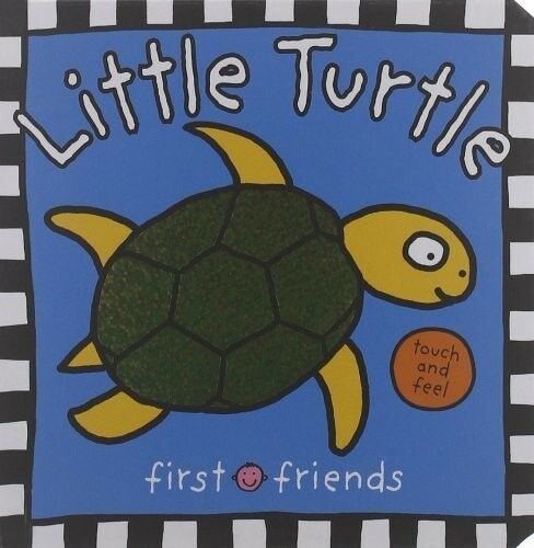 First Friends New Books Little Turtle