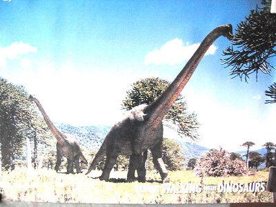 2 X Dinosauri Poster Torosaurus Latus Brachiosauro Muro Da Appendere Foto Daily Mail-mostra Il Titolo Originale Disponibile In Vari Disegni E Specifiche Per La Vostra Selezione