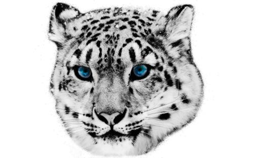 T05 Bügelbild Bügeltransfer Leopard für helle Stoffe auf DIN A5 o A4 Bügelbilder