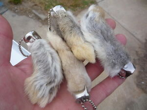 GENUINE RABBITS FOOT 12 REAL RABBIT FEET A DOZEN NATURAL KEYCHAINS GOOD LUCK!