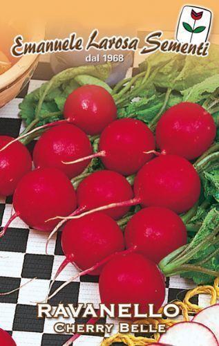 700 Semi//Seeds RAVANELLO Cherry Belle