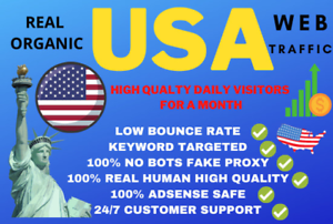 Unlimited Website Traffic For 30 days extras Live Stats Provided