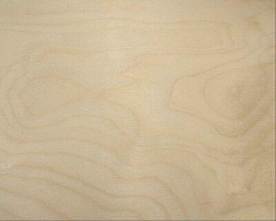 3 mm 1//8 X 12 X 20 Premium Baltic Birch Plywood 40 Pack B//BB Grade by Wood-Ever