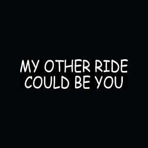MY-OTHER-RIDE-COULD-BE-YOU-Sticker-Funny-Vinyl-Decal-Single-Joke-Sex-Cute-Gift