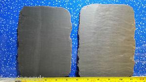 Fennstones plat loose véritable pierre naturelle Ardoise pièces aquarium vivarium tortue-afficher le titre d`origine RpHIuzv9-07200442-213550105