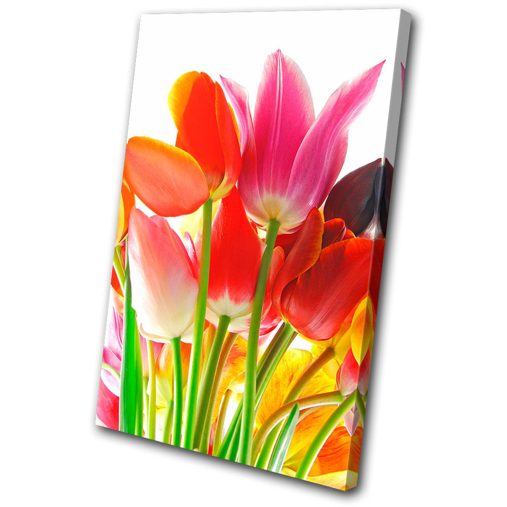 Floral Tulips Flowers SINGLE TOILE murale ART Photo Print