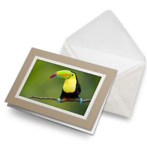 Greetings-Card-Biege-Colourful-Toucan-Bird-Birds-Animals-8744
