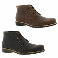 Panama Jack Kinsey Mens Waterproof Brown Leather Chukka Ankle Boots Size 8-11
