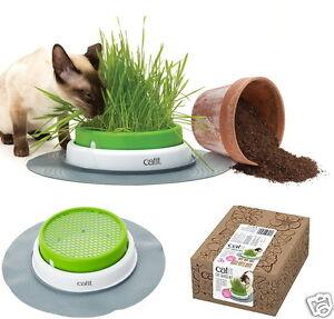 Catit senses 20 grass planter cat kit set seeds vermiculite indoor image is loading catit senses 2 0 grass planter cat kit workwithnaturefo