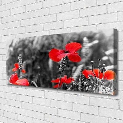 Leinwand-Bilder 100x50 Wandbild Canvas Kunstdruck Mohnblumen Pflanzen