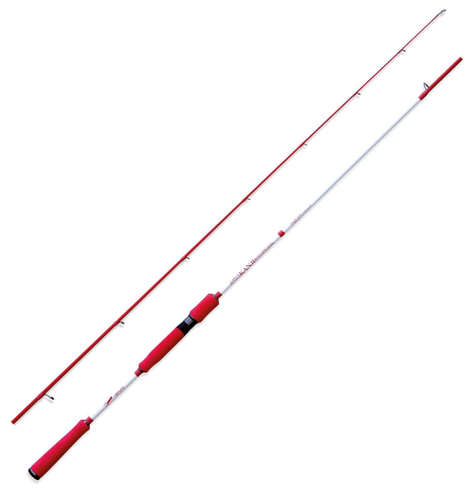 NM23111524 Nomura canna pesca Eging SW Kanji 240 seppia cefalopodi CAS