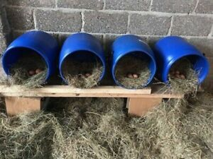 4x50Ltr Recycled Plastic Barrel ideal for Chickens/Ducks Nest Box Easy To Clean