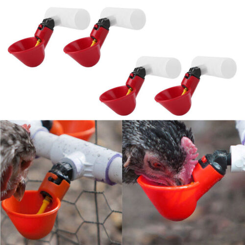 4 Pcs Automatic Cups Chicken Waterer Poultry Bird Auto Feed Water PVC New