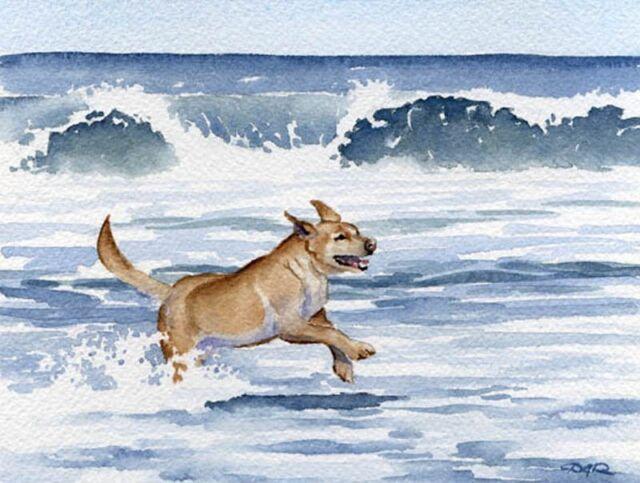 Blue GOLDEN RETRIEVER Contemporary Watercolor 11 x 14 ART Print by Artist DJR