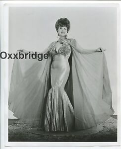 1960s Original 4 x 5 Nude Photo Super Buxom Brunette