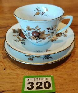 ROYAL-WORCESTER-Autumn-TRIO-TEA-CUP-SAUCER-AND-SIDE-PLATE-VGC
