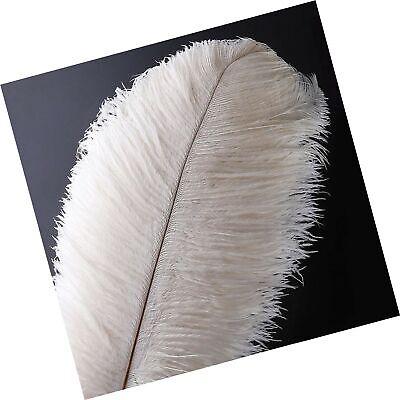 for Wedding Centerpieces Home Decoration 10pcs Natural Ostrich Feathers Plume 14-16inch 35-40cm Black