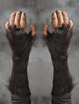 Chimpanzee Chimp Great Ape Monkey Hands Adult Halloween Costume Gloves