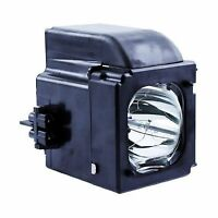 Bp96-01653a Samsung Hl-t5075s Tv Lamp By Fi Lamps Free Shipping