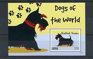 Liberia 2012 MNH Dogs of World 1v S/S II Pets Scottish Terrier Stamps