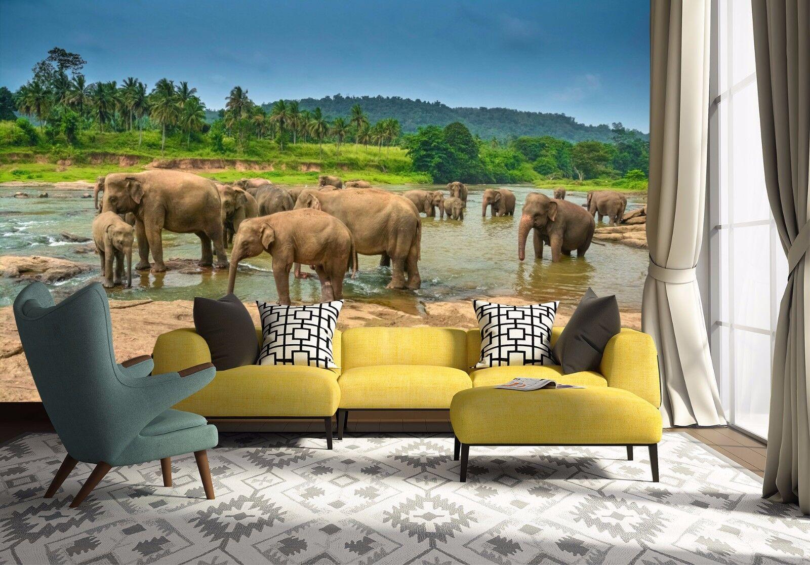 3D Elephants River 742 Wall Paper Murals Wall Print Wall Wallpaper Mural AU Kyra