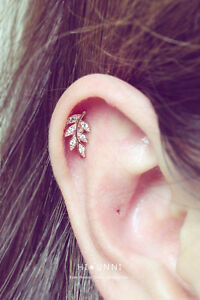 Image Is Loading 16g Leaf Cartilage Earring Helix Conch Ear Stud