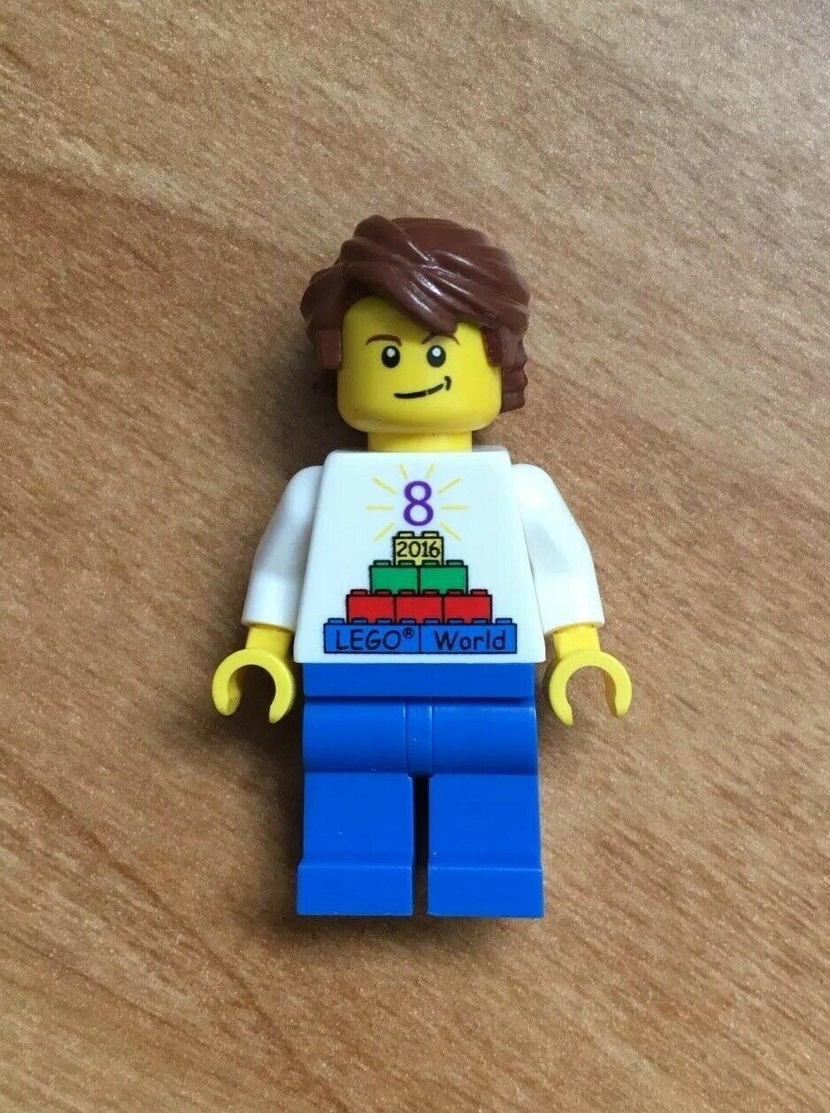 LEGO World Denmark 2016 Pattern Rare European Version Puzzle Logo Minifigure