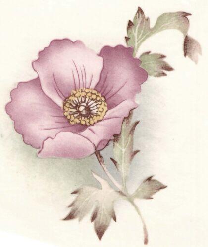 "Dusty Pink Cosmos Flowers 4 pcs 2-3//4/""  Waterslide Ceramic Decals Xx"