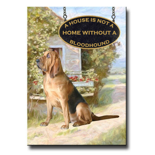 BLOODHOUND House Is Not A Home FRIDGE MAGNET New DOG