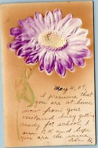 Embossed-postcard-purple-daisy-posted-1908