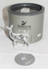 Swarovski Crystal Figurine DOE DEER (Rare Encounters) in Box w/ COA 247963