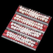 Dental Alloy Pin Porcelain Teeth Dental Materials Colors Shade Guide Upper Teeth