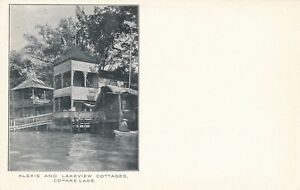 COPAKE-LAKE-NY-Alexis-and-Lakeview-Cottages-udb-pre-1908