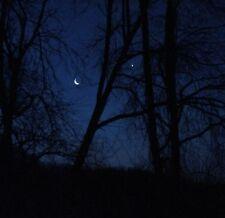 Starry Night Sky Moon Trees Silhouette Landscape Lunar Romantic Artwork Print