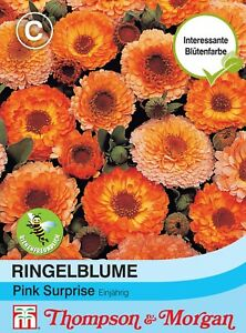 2000stk Ringelblume Samen Calendula Originalverpackung Blumensamen Neu Super