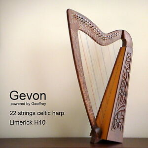 Gevon-22-Strings-Rosewood-Celtic-Irish-Harp-Carry-bag-Book-Limerick-H10