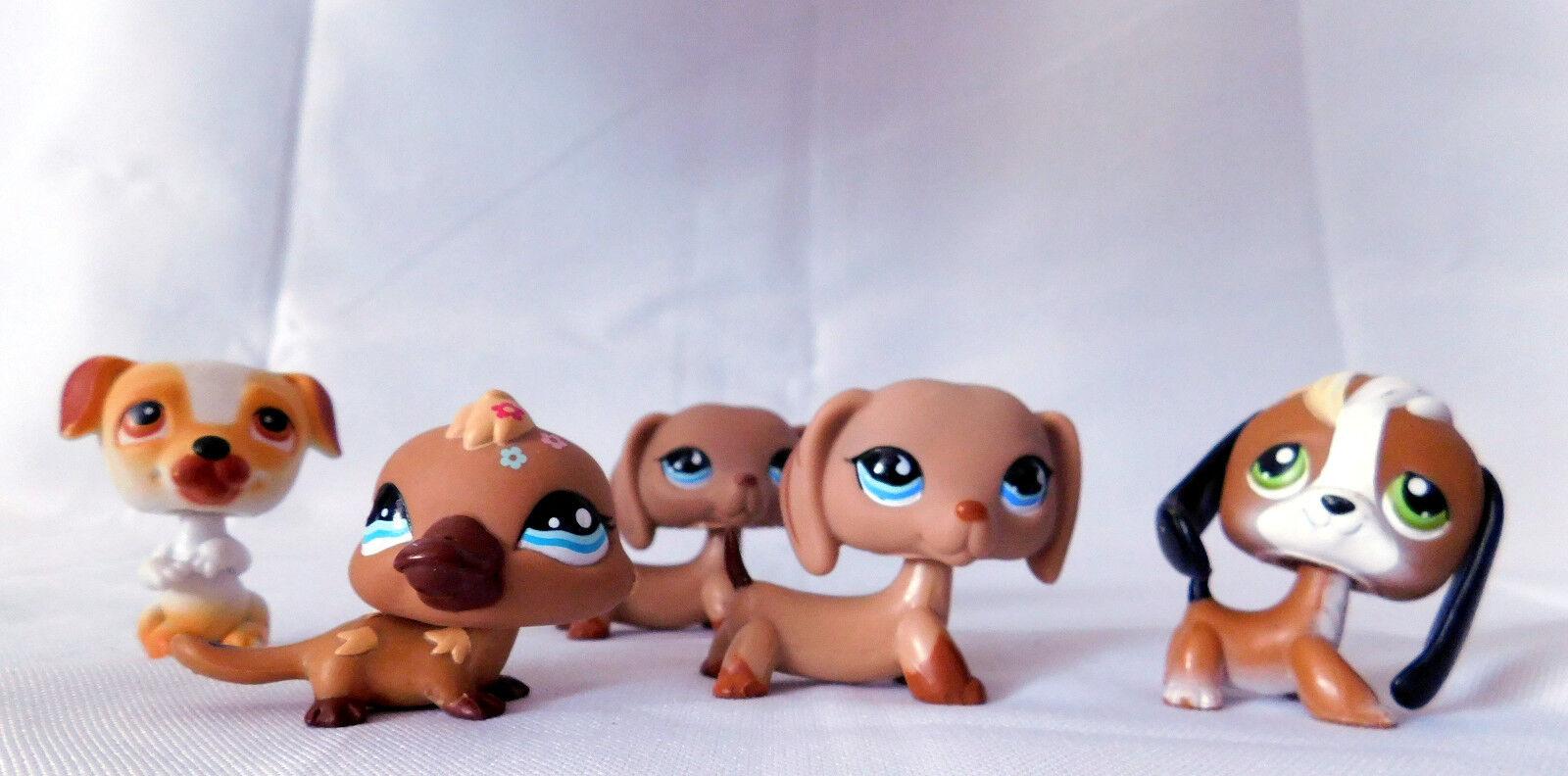 5 Littlest Pet Shop 2 Daschunds bluee Eyes + Beagle Platypus PUppy