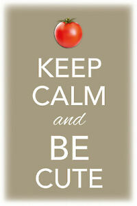 Keep-Calm-And-Be-Cute-Panneau-Metallique-Plaque-Voute-en-Etain-20-X-30-cm-CC0459