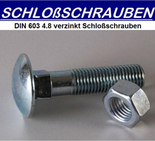 200 ST Schlossschrauben DIN603 verzinkt     M5x35 mit Mutter