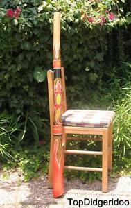 "Bien éDuqué 47 ""\ 120cm Aborigène Didgeridoo Termite Creusés Teck + Sac + Cire D'abeille +"