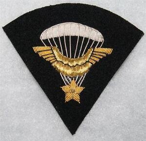 Brevet de parachutiste FAFL-compagnie d'infanterie de l'air Z6gL3KeU-09101028-132834547