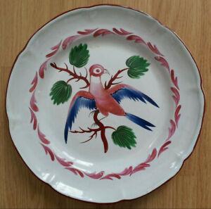 RARE-SUPERBE-ancienne-ASSIETTE-XIXe-FAIENCE-DES-ISLETTES-oiseau-pigeon-colombe