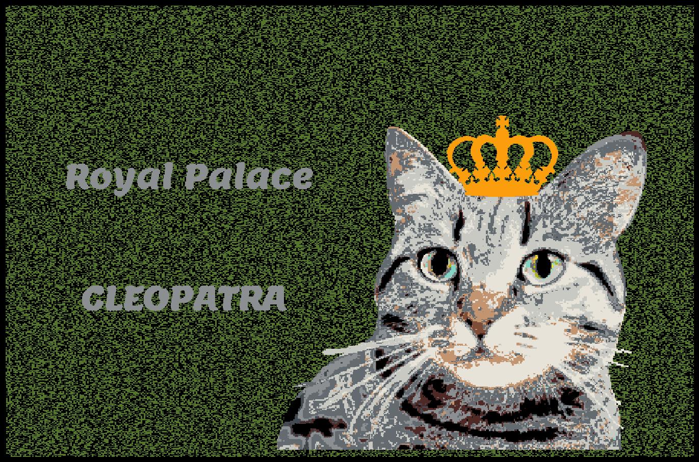 Fußmatte mit Namen Napfunterlage Katzenmatte  90x60 cm  Design 27180039